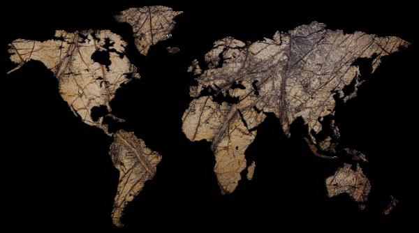 MapaWall-StoneCut-world-map-Hawksbill-Brown